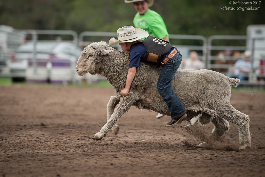 Mutton Busting. Bulls and Barrels at Stokes GSR Arena. June 2017. Polk City. FL