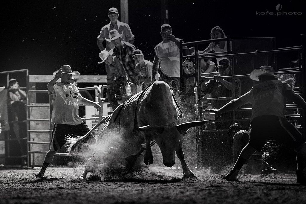 Wrecking Ball the bull.